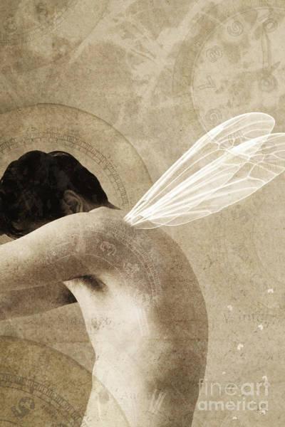 Photograph - Male Fairy by Clayton Bastiani