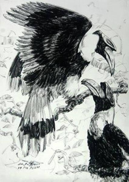 Hornbill Drawing - Male Hornbills by Chaitawee Bubpa