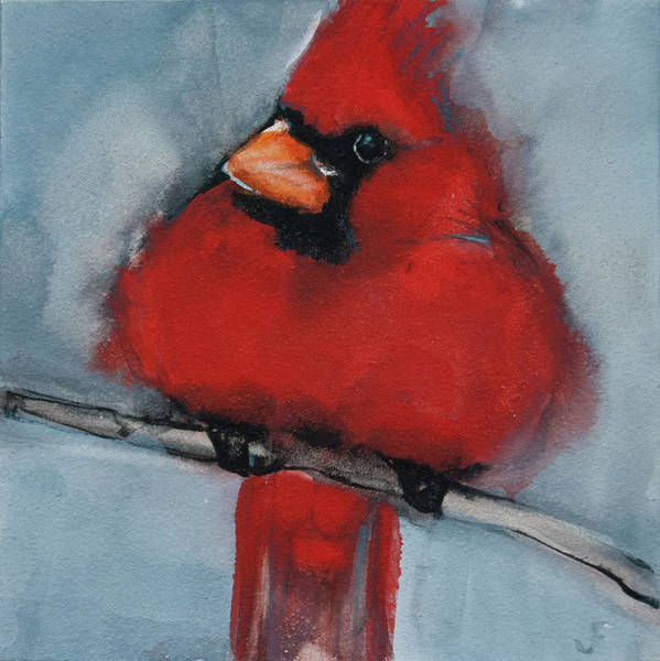 Painting - Male Northern Cardinal by Jani Freimann