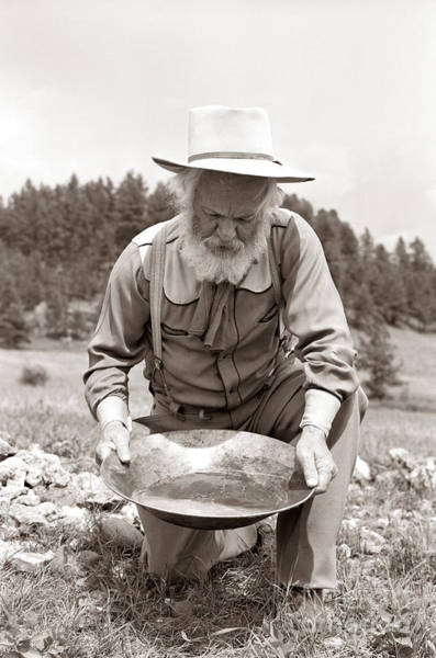 Photograph - Male Prospector Panning For Gold by H Armstrong Roberts and ClassicStock
