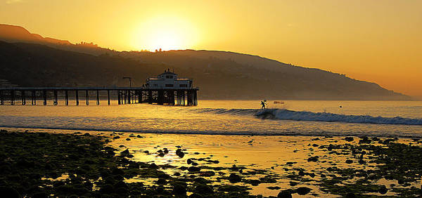 Longboard Photograph - Malibu Rider by Ron Regalado