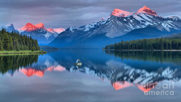 Photograph - Maligne Pink Tips by Adam Jewell