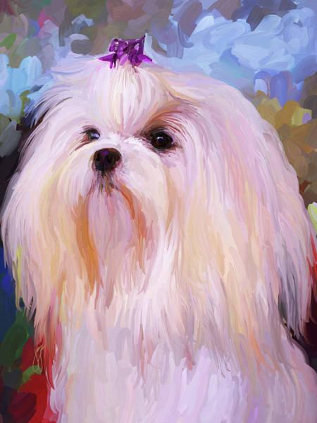 Painting - Maltese Portrait by Jai Johnson
