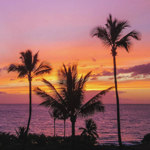 Photograph - Maluaka Beach Sunset by Andy Konieczny