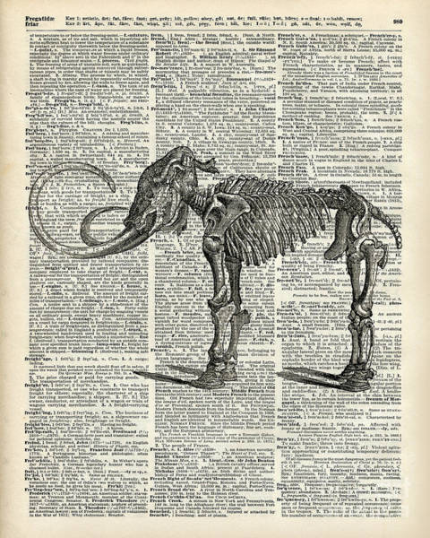 Wall Art - Mixed Media - Mammoth Elephant Bones Over A Antique Dictionary Book Page by Anna W