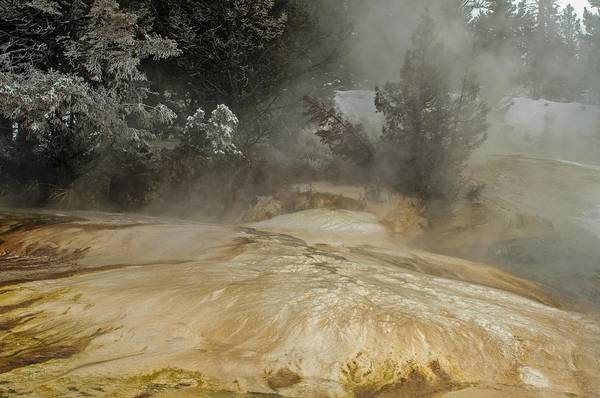 Photograph - Mammoth Hot Springs Terrace In Winter by NaturesPix