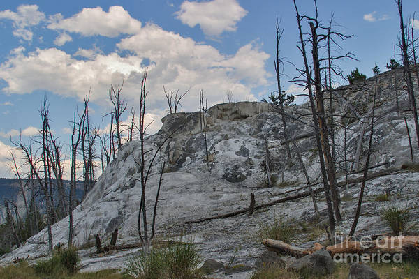 Photograph - Mammoth Hot Springs -- Upper Terraces by Charles Kozierok