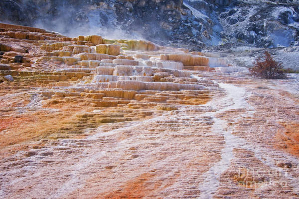 Yellowstone Photograph - Mammoth Terraces Of Yellowstone by Delphimages Photo Creations