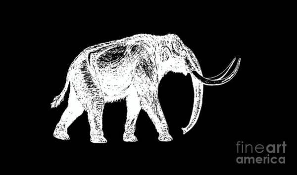 Sweatshirt Wall Art - Digital Art - Mammoth White Ink Tee by Edward Fielding