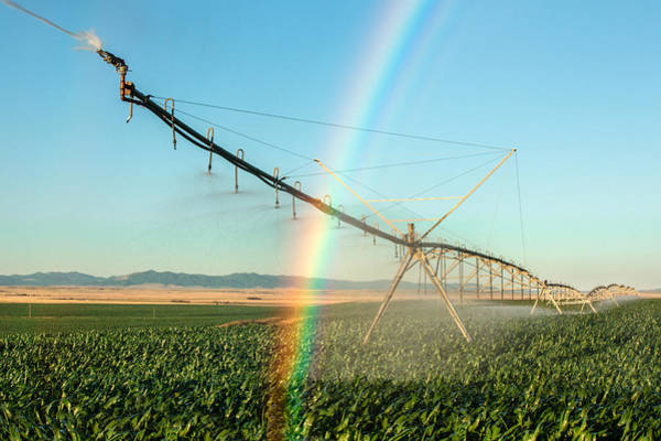 Photograph - Man Made Rainbow by Todd Klassy