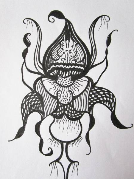 Drawing - Man Of A Flower  by Rosita Larsson