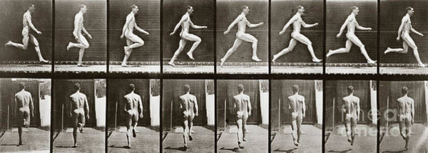 65 Photograph - Man Running, Plate 65 From Animal Locomotion, 1887 by Eadweard Muybridge