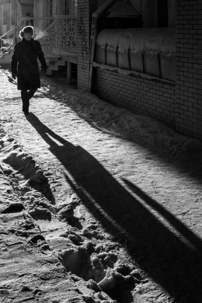 Photograph - Morning Winter Walk And My Shadow by John Williams