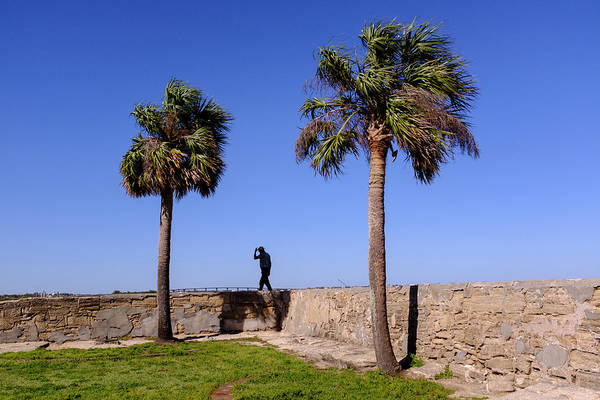Man With A Hat On The Wall With Palm Trees In Saint Augustine Fl Art Print
