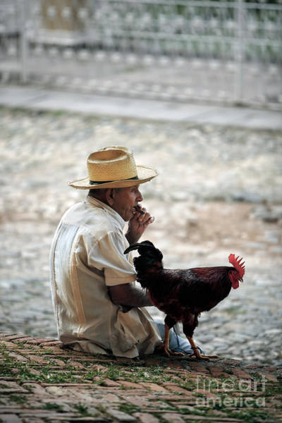 Cigar Photograph - Man With Rooster - Trinidad - Cuba  by Rod McLean