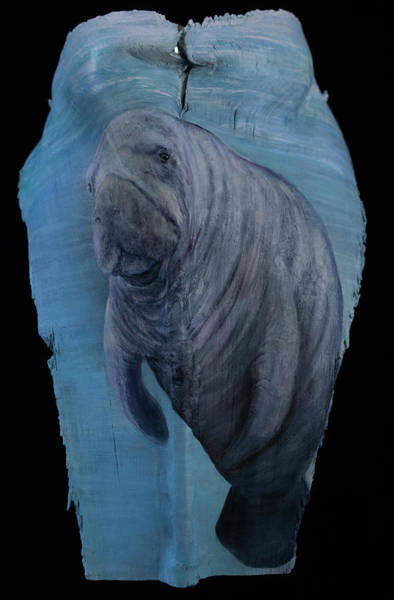 Painting - Manatee On Palm Frond by Nancy Lauby