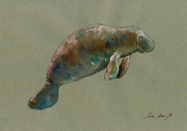 Wall Art - Painting - Manatee Watercolor Art by Juan  Bosco