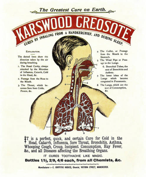 Wall Art - Photograph - Manchester England Creosote Cure  1910 by Daniel Hagerman