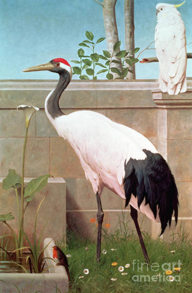 Stork Painting - Manchurian Crane, Cockatoo And Robin by Henry Stacey Marks