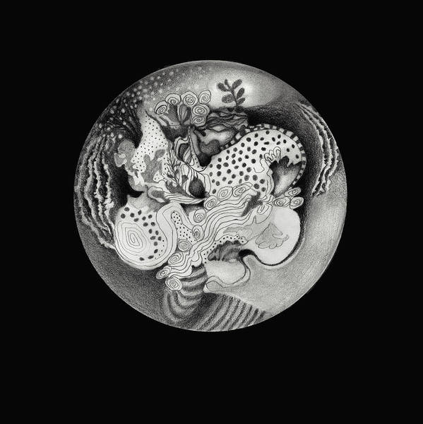Organic Drawing - Mandala by Ann Powell