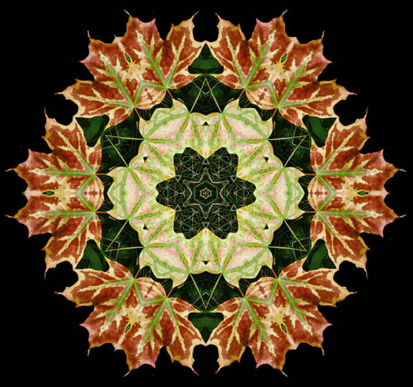 Mandala Autumn Star Art Print