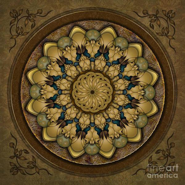 Display Digital Art - Mandala Earth Shell by Peter Awax