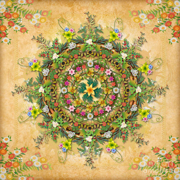 Graphic Mixed Media - Mandala Flora by Peter Awax