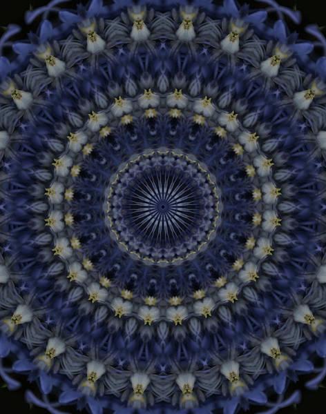 Photograph - Mandala In Blue And Grey Colors by Jaroslaw Blaminsky
