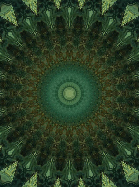 Wall Art - Photograph - Mandala In Brown And Green Tones by Jaroslaw Blaminsky