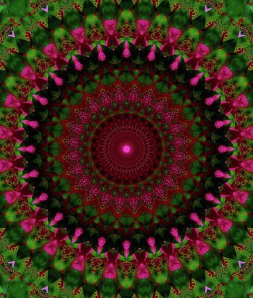 Digital Art - Mandala In Pink Red And Green Tones by Jaroslaw Blaminsky