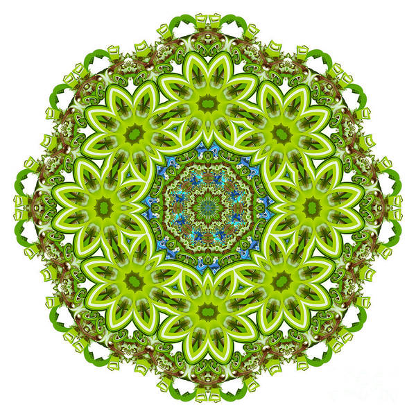 Variance Collection Digital Art - Mandala - Revival-2201-01gb by Variance Collections