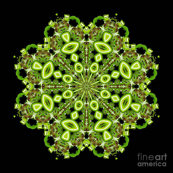 Variance Collection Digital Art - mandala - Revival-2201- 02gb by Variance Collections