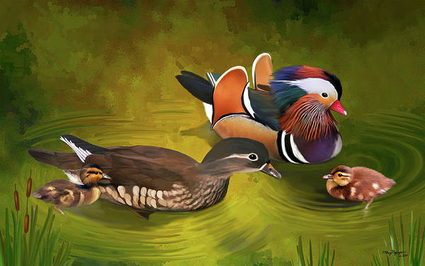 Mandarin Wall Art - Digital Art - Mandarin Duck Family by Thanh Thuy Nguyen