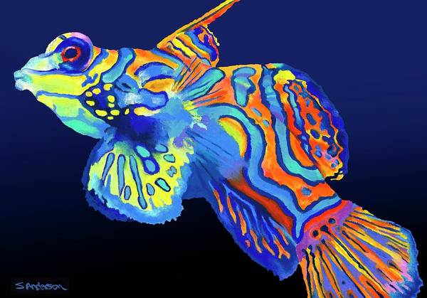 Wall Art - Painting - Mandarin Fish by Stephen Anderson