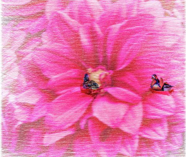 Photograph - Mandarinducks In Flower #e2 by Leif Sohlman