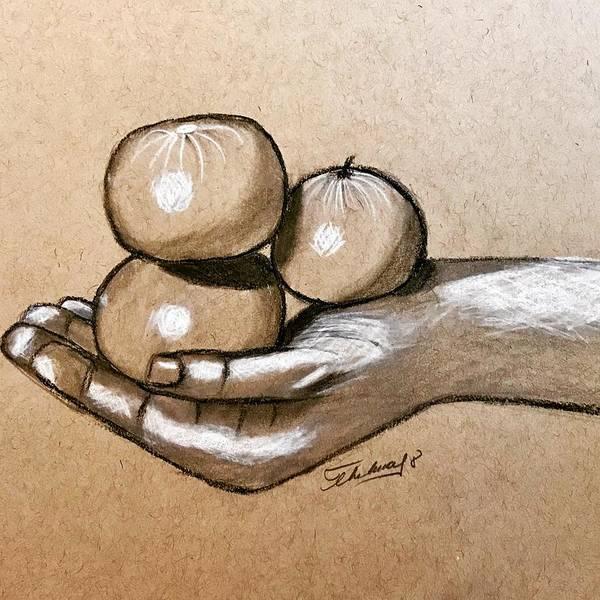Drawing - Mandarines by Thelma Delgado