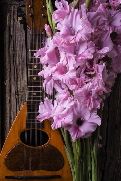 Hand Made Wall Art - Photograph - Mandolin And Glads by Garry Gay