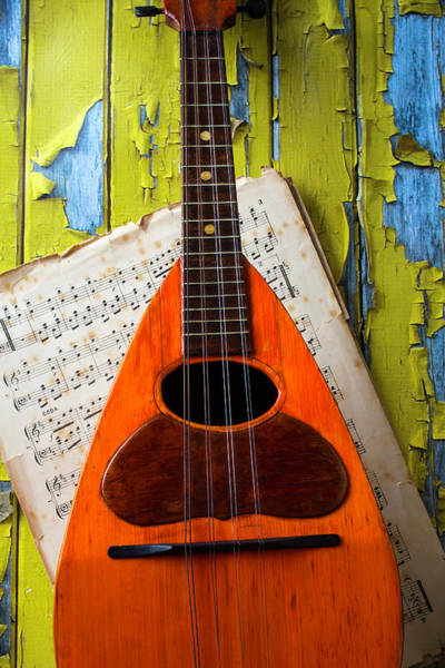 Hand Painted Photograph - Mandolin And Old Sheet Music by Garry Gay