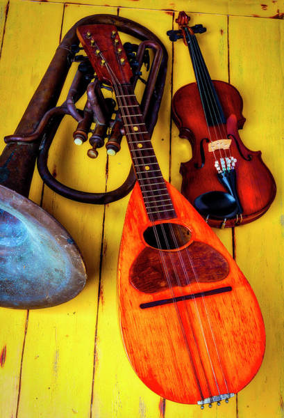 Wall Art - Photograph - Mandolin Tuba And Violin by Garry Gay
