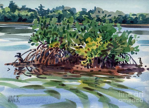 Mangrove Wall Art - Painting - Mangrove Island by Donald Maier