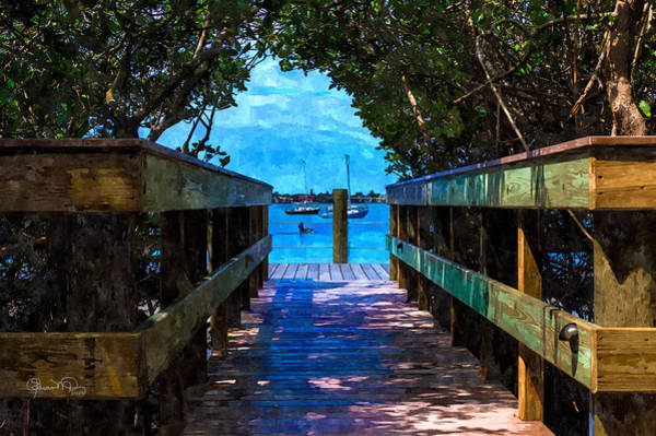 Photograph - Mangrove Tunnel At Selby by Susan Molnar
