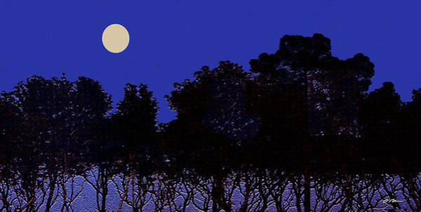 Mangroves Digital Art - Mangroves In The Moonlight by Claudia O'Brien