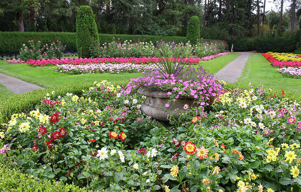 Manito Park Spokane Photograph - Manito Park Garden 1 by Ellen Tully