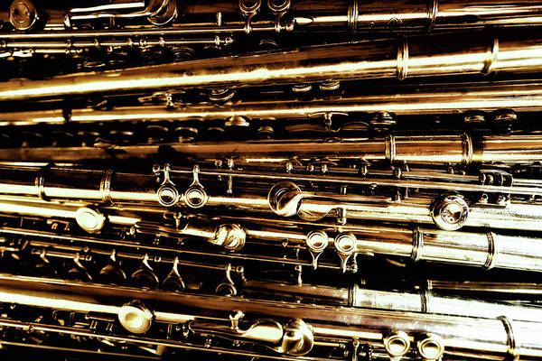 Photograph - Many Flutes by Miles Whittingham