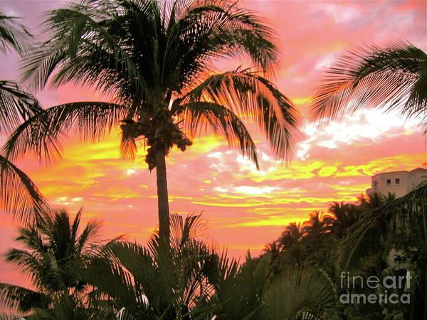 Photograph - Manzanillo Magic by Patsy Walton