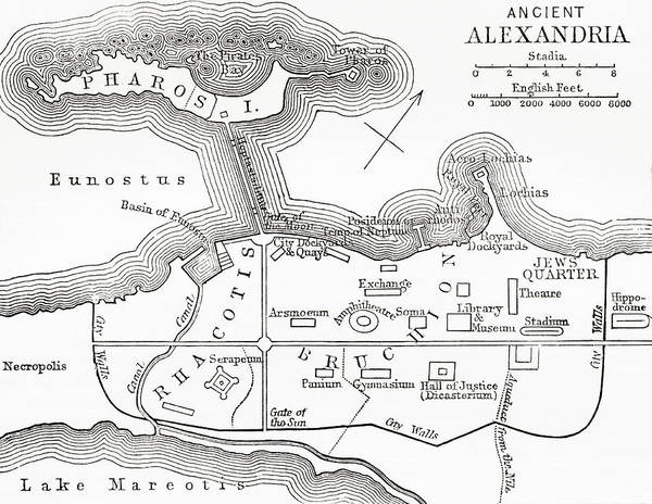Ancient Egypt Drawing - Map Of Ancient Alexandria, Egypt. From by Vintage Design Pics