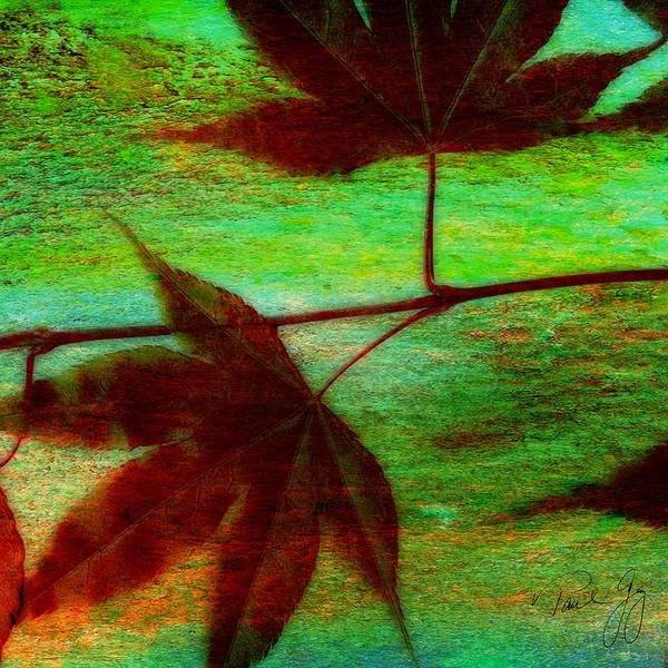 Mixed Media - Maple Leaf 1 by Paul Gaj