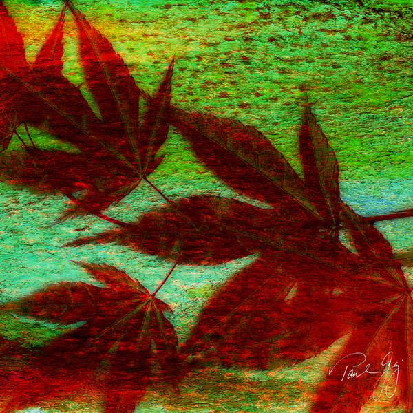 Mixed Media - Maple Leaf 2 by Paul Gaj