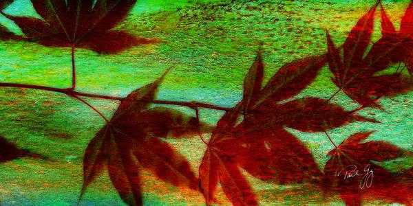 Mixed Media - Maple Leaf 3 by Paul Gaj