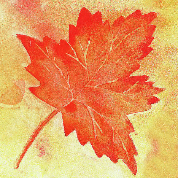 Painting - Maple Leaf Free Float by Irina Sztukowski